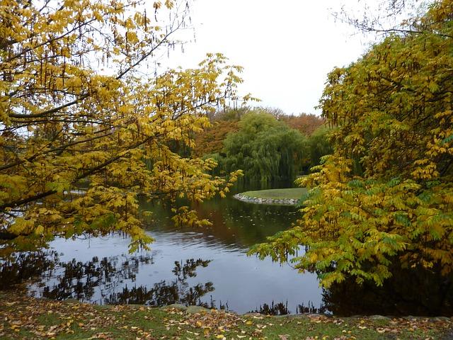 rybník ve Švédsku
