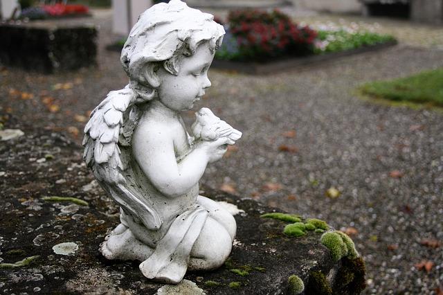 socha andílka
