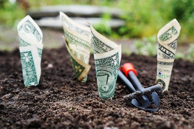 růst bankovek